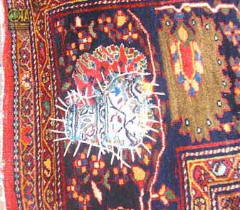 Antiker Teppich wird vor der Teppichwäsche bei uns provisorisch befestigt