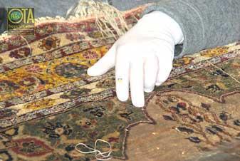 Erfahrener Fachmann sucht schadhafte Stellen im Teppich