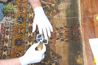 Fachmann schaut mit Lupe den Zustand des antiken Teppichs