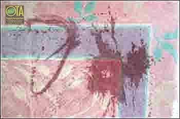 Rotweinflecken im Teppich sind häufig Haftpflichtschaden