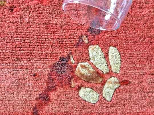 Rotweinfleck im Teppich muss durch Fleckenentfernung behandelt werden.