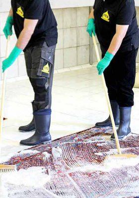 Teppichwäsche per Hand ohne Chemie